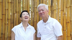 Asian senior couple stay together in nature. Talking and touching with love - stock footage