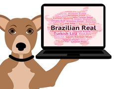 Brazilian Real Indicates Foreign Currency And Broker - stock illustration