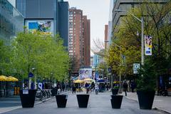 Gould Street, at Ryerson University, in Toronto, Ontario. Stock Photos