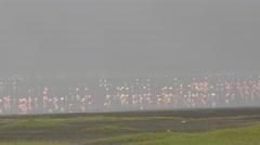 Flamingos in the Ngorongoro crater Tanzania - 4K Stock Footage