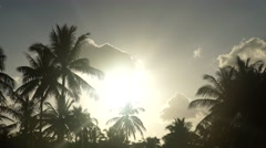Coconut palms against in front of the setting sun sky. Time lapse Stock Footage