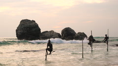Stilt fishermen fishing, sunset, nr Galle, SW Coast, Sri Lanka Stock Footage
