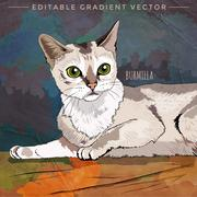 Burmilla Cat Illustration - stock illustration