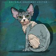 Sphynx Cat Illustration - stock illustration