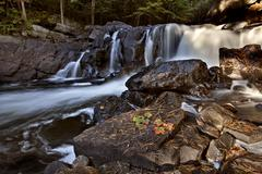 Algonquin Park Muskoka Ontario Waterfall Stock Photos