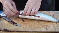 Butchering mackerel on nature Stock Footage