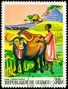 Lan, the child buffalo - scene from African Legends on postage stamp - stock photo