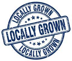 locally grown blue grunge round vintage rubber stamp - stock illustration