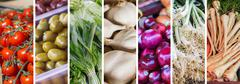 Fresh Vegetable , collage of variety healthy food on the farmers market. Stock Photos