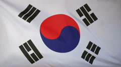 South Korea Flag real fabric Close up 4K Stock Footage