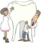 Two dentists holding up a giant tooth - stock illustration