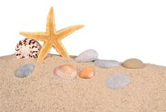 Starfish and seashells in a beach sand on a white - stock photo