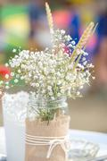 Flowers in mason jar Stock Photos