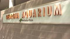Georgia Aquarium Atlanta at Pemberton Place - stock footage