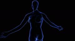 Female Body - stock footage