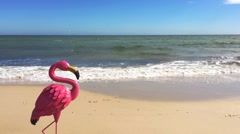 Quirky on-trend Summer Is Here concept with flamingo on the beach. Stock Footage