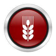 Grain icon, red round button isolated on white background, web design illustr Stock Illustration