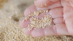 Close up of a hand grabbing a handful of quinoa Stock Footage