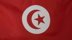 Tunisia Flag real fabric Close up 4K - stock footage