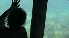 Child travel in Semi Submarine great barrier reef Queensland Australia - stock footage