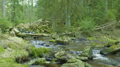 River & Small Waterfall In The Forrest Stock Footage