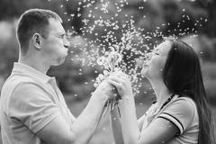 Couple in love blowing cheerfully blowballs flowers in faces of each other Stock Photos