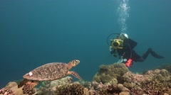 Underwater videographer, filming a Hawksbill turtle. Stock Footage