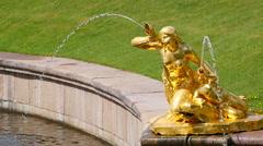 Peterhof.Fragments of the Main cascade.Slow motion.Saint Petersburg - stock footage