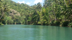 River in the jungle. Philippines. - stock footage