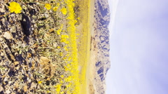 3axis MoCo Time Lapse of Sunset over Super Bloom 2016 in Death Valley -Vertical- Stock Footage