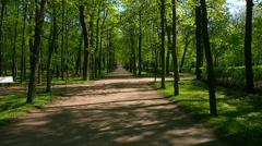 Peterhof.Walk through alley.Slow motion.Saint Petersburg Stock Footage