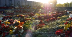 Flowers placed at a monument for victory day of World war 2, 4k Stock Footage