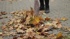 Female cleaning the street, sweeping fallen leaves in park, hard work, low wages Stock Footage