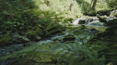 Steadicam of multiple small waterfalls that flows through a canyon Stock Footage