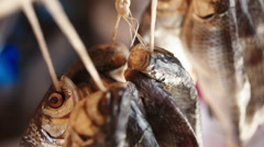 Salted fish hanging dried Stock Footage