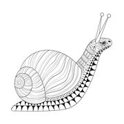 Hand drawn zentangle Snail for adult anti stress colouring pages - stock illustration