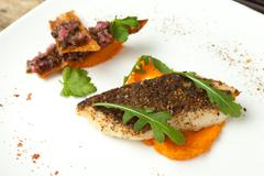 Pike-perch fillet with vegetable sauce and Mexican salsa. Stock Photos