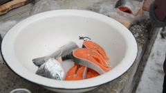 Frozen fish salmon cut Stock Footage