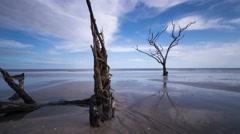 Botany Bay Beach, South Carolina - stock footage