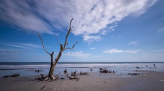 Botany Bay Beach, South Carolina Stock Footage