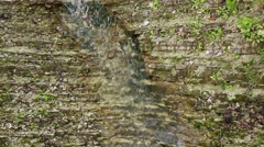 Water flows through an stone wall next to a decorative plant Stock Footage