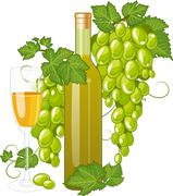 White wine bottle and wineglass Stock Illustration