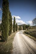 Rural road and cypress trees, Siena, Valle Orcia, Tuscany, Italy Stock Photos