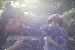 Mother and toddler son smelling bunch of lavender Stock Photos
