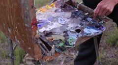 Plein Air Painting Stock Footage