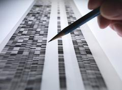 Scientist viewing DNA gel used in genetics, forensic, pharma research, Stock Photos