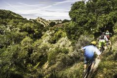 Cyclists on Monterey County Park, Toro County Park, Pipeline Trail Stock Photos