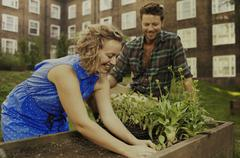 Couple planting raised bed on council estate allotment - stock photo