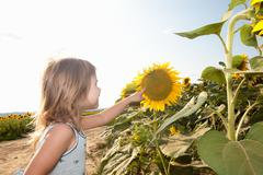 Girl pointing to sunflower - stock photo