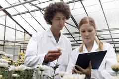 Horticulturists working in greenhouse - stock photo